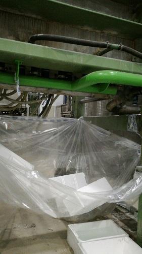 styrofoam5